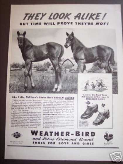 Horses Colts Photo – Weather Bird Kids Shoes (1942)