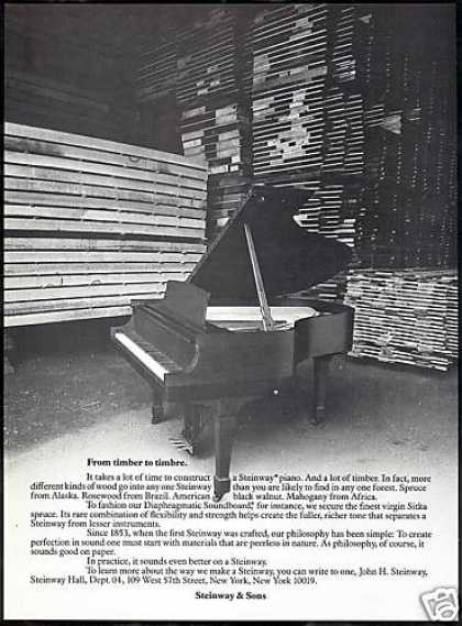 Steinway Piano Different Wood Timbers Photo (1981)