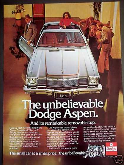 Dodge Aspen Removable Top Car Photo (1977)