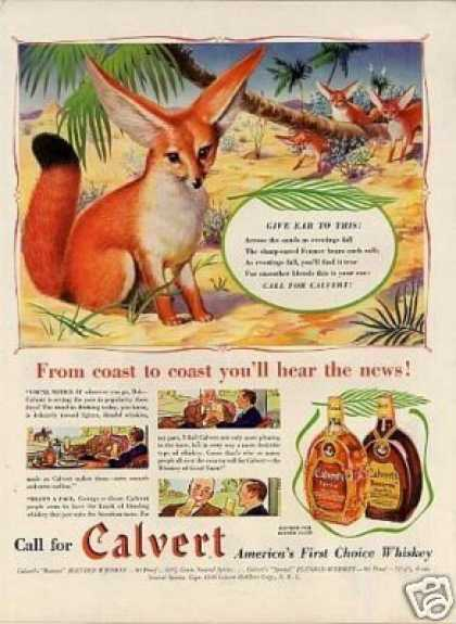 Calvert Whiskey Ad Fox (1939)