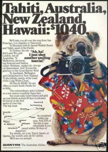Qantas Airlines Koala Bear Pentax Camera Photo (1981)