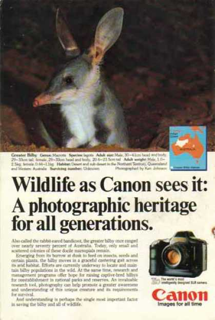 Canon T90 SLR Camera – Greater Bilby Rabbit Eared Bandicoot (1986)