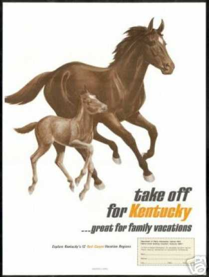 Horse & Colt Kentucky Vacation Travel (1967)