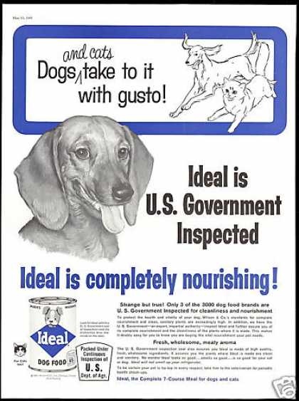 Dachshund Ideal Dog Food Vintage (1961)