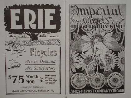 Hulbert Air Brake Erie Imperial Windsor Orient Palmer Tires Discon Chain bicycle (1896)