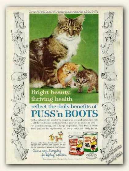 """""""Three On the Watch"""" Cat Photo Puss'n Boots (1961)"""