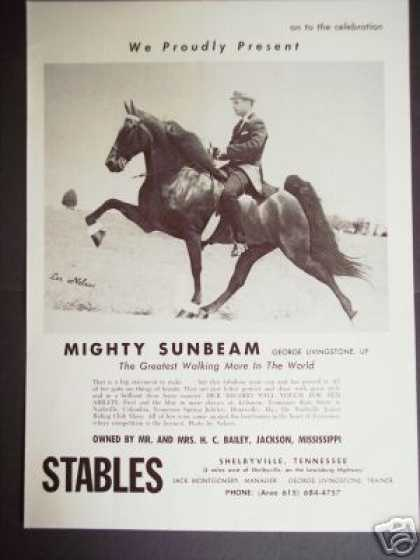 Show Horse Mighty Sunbeam Les Nelson Photo (1965)
