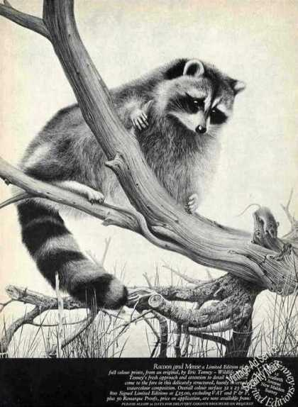 """""""Racoon & Mouse"""" By Eric Tenney Prints (1974)"""