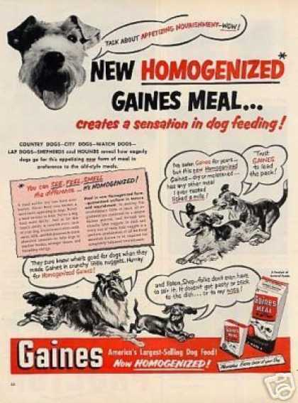 Gaines Dog Meal (1951)