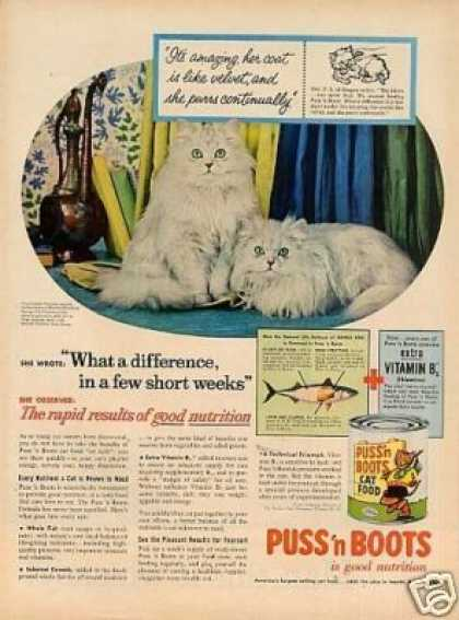 Puss 'n Boots Cat Food Ad White Persians (1956)