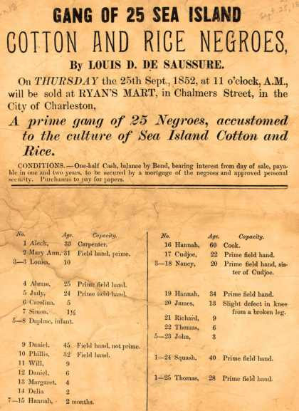 Ryan's Mart – Gang Of 25 Sea Island Cotton And Rice Negroes, By Louis D. De Saussure. (1852)