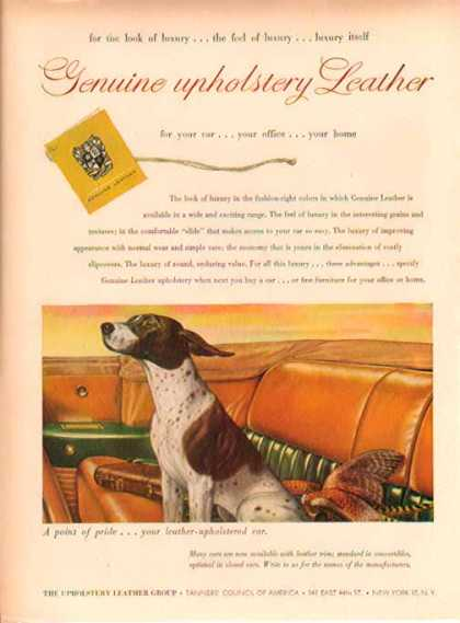 Upholstery Leather Group – English Pointer (1949)