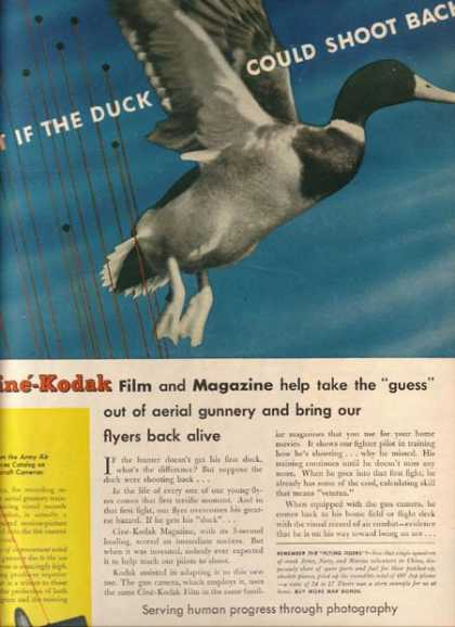 """Kodak's """"What if the duck could shoot back!"""" (1944)"""