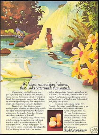 Florida Citrus Growers Waterfall Butterfly Swan (1973)