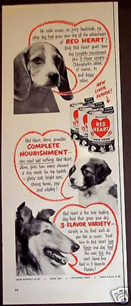 Red Heart Dog Food Beagle Collie Dogs (1953)